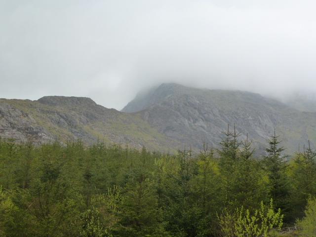 Moel Hebog in the mist