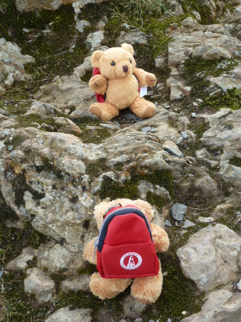 Mountain Rescue bears Ted and Wally on Catbells
